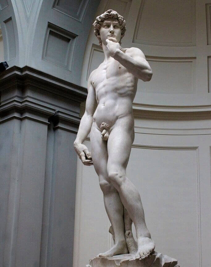 Apologise, michelangelo s david opinion